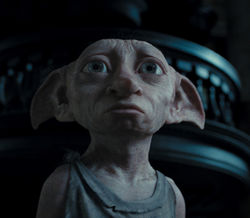 elfes_maison_Dobby_HP7